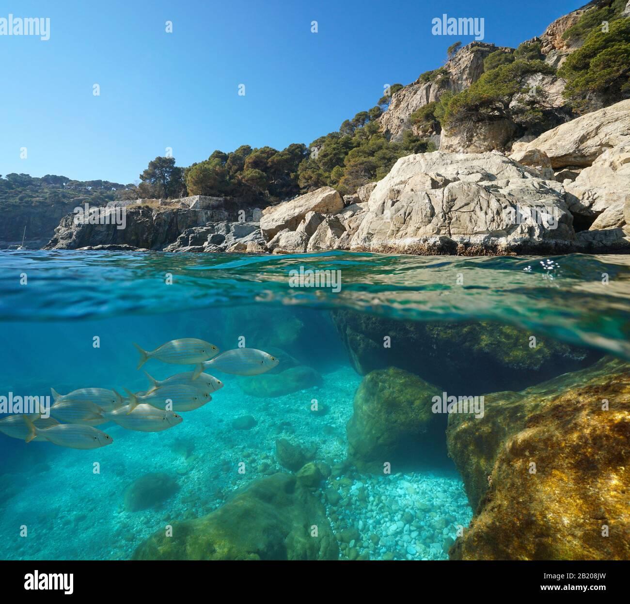 Mar Mediterráneo, costa rocosa con peces bajo el agua, vista dividida sobre y debajo de la superficie del agua, España, Costa Brava, Rosas, Cataluña Foto de stock