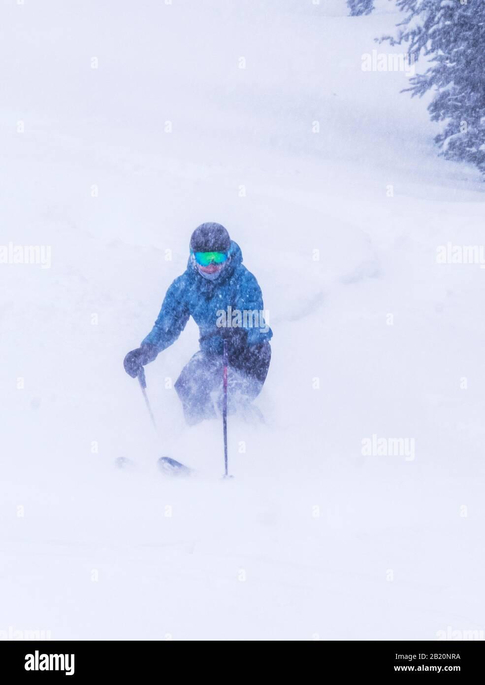 Esquiadora femenina en polvo fresco en Monarch Mountain ski & snowboard resort en el Continental divide en Colorado, Estados Unidos Foto de stock
