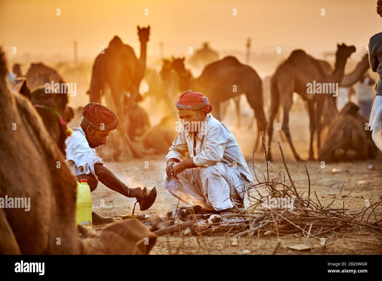 Hombres nómadas de la tribu con turbans tradicionales regatean por los precios entre sus camellos en la feria de camellos y ganado, Pushkar Mela, Pushkar, Rajasthan Foto de stock