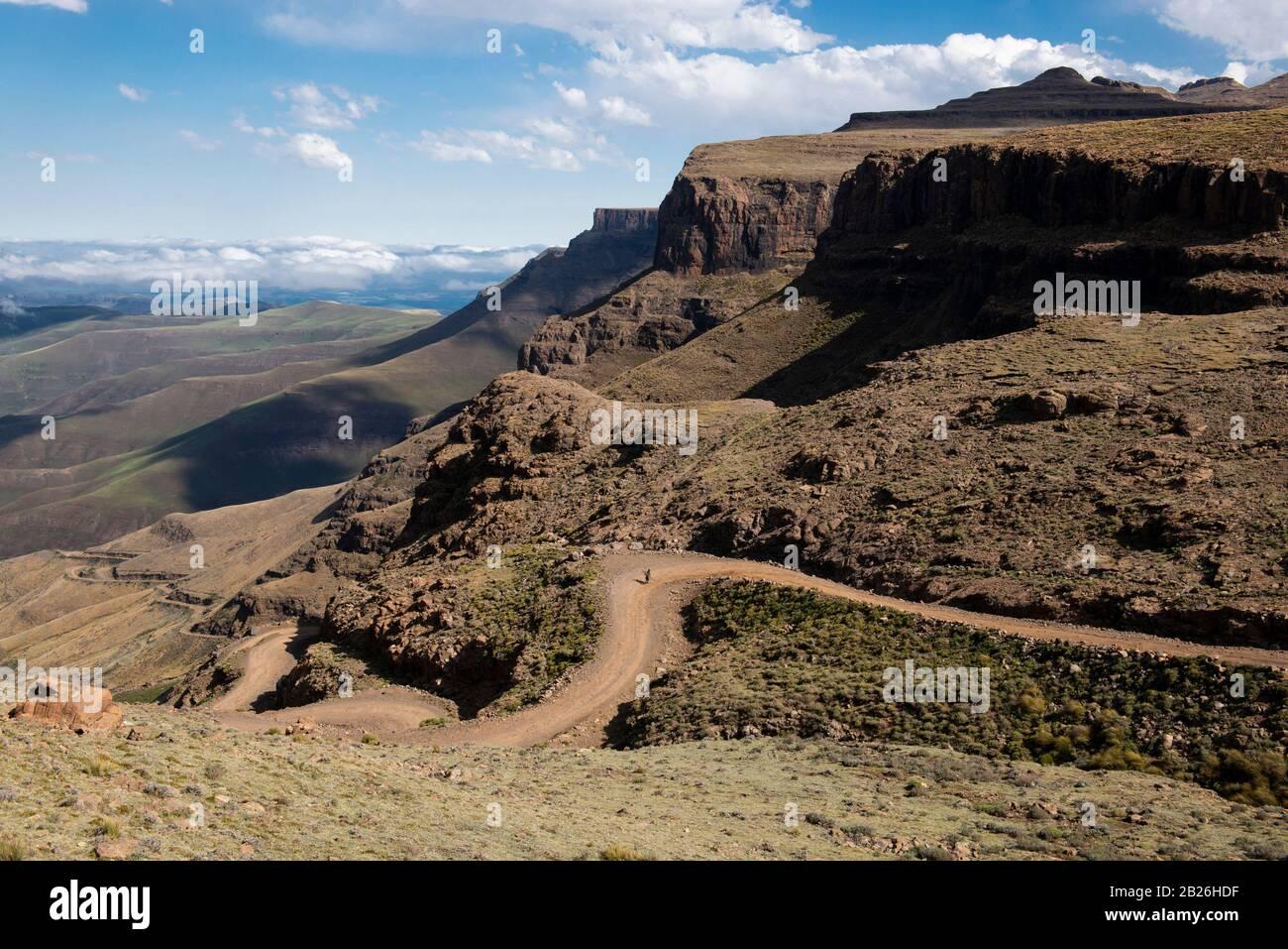 Basotho llevando madera hasta Sani Pass, Lesotho Foto de stock