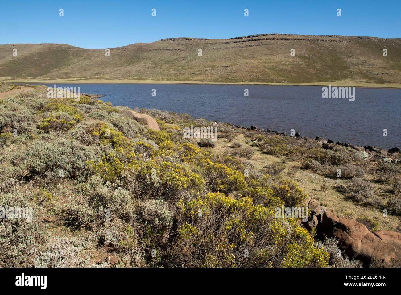 Lets'eng-la-Letsie, humedal Ramsar, Lesotho Foto de stock