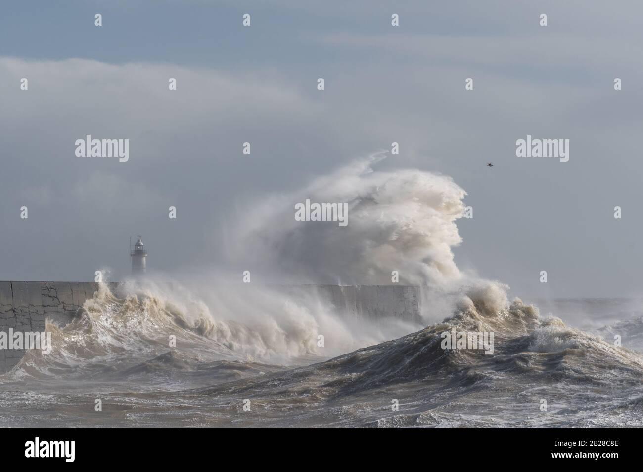 Newhaven, Sussex del este el 29 de febrero de 2020. Tormenta Jorge batters Inglaterra trayendo vientos fuertes y fuertes lluvias. Foto de stock