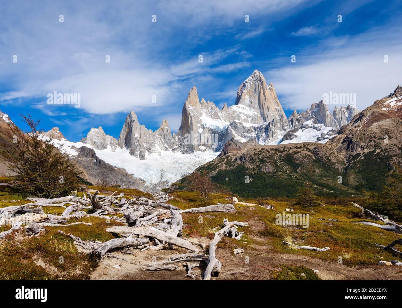 PARQUE Nacional LOS GLACIARES, ARGENTINA - ALREDEDOR DE FEBRERO 2019: Valle y árboles muertos en el Parque Nacional los Glaciares en Argentina. Foto de stock