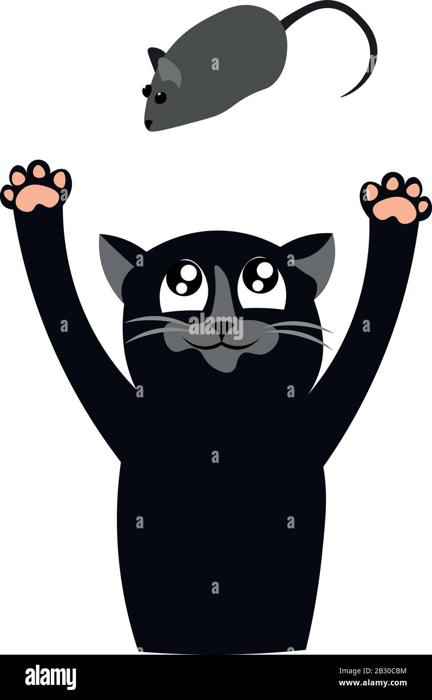 Un gato negro está jugando con un ratón. Depredador. Diseño para tienda de mascotas, clínica veterinaria y refugio. Ilustración del Vector
