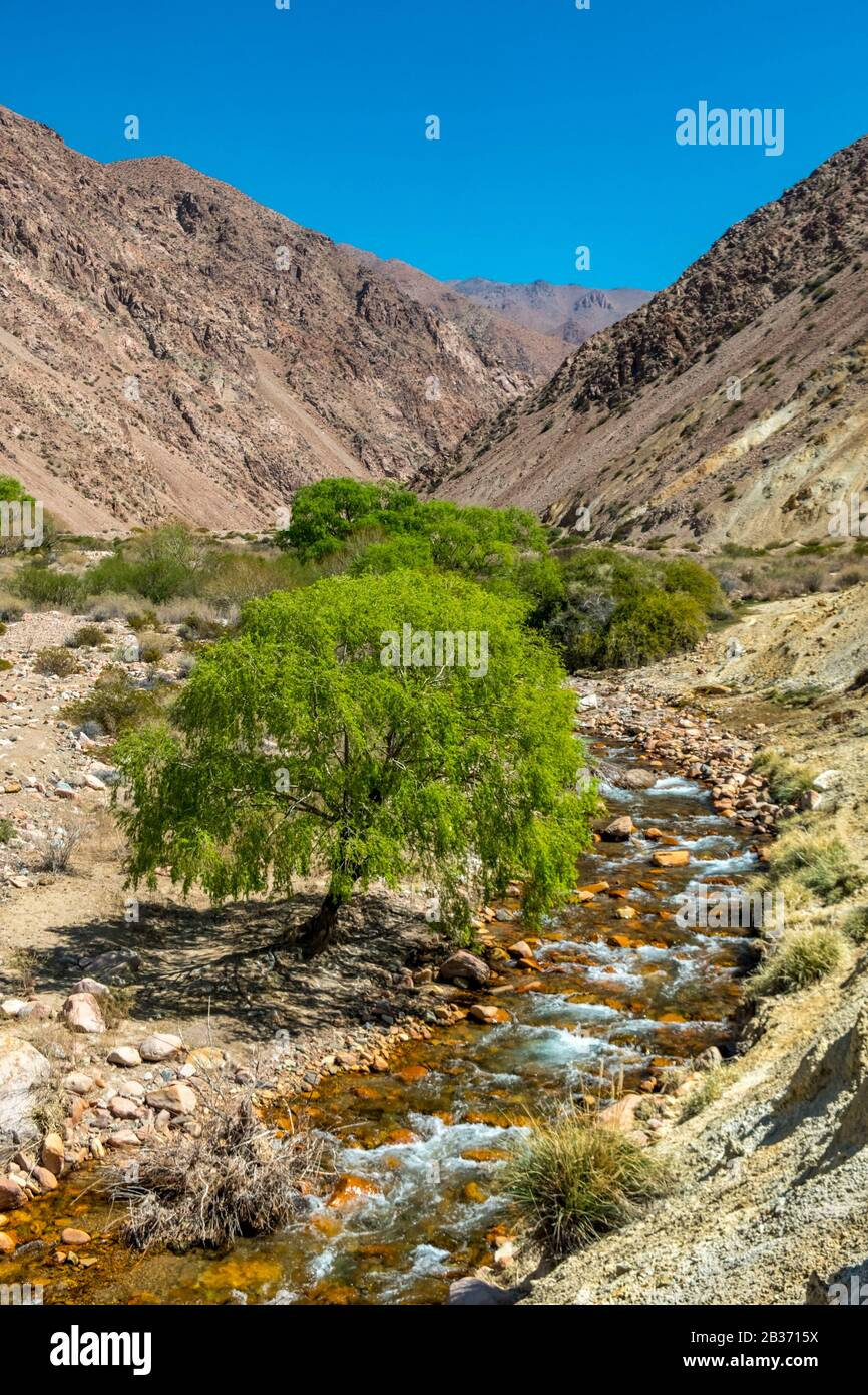Argentina, provincia de San Juan, Calingasta, Valle de Calingasta Río Foto de stock