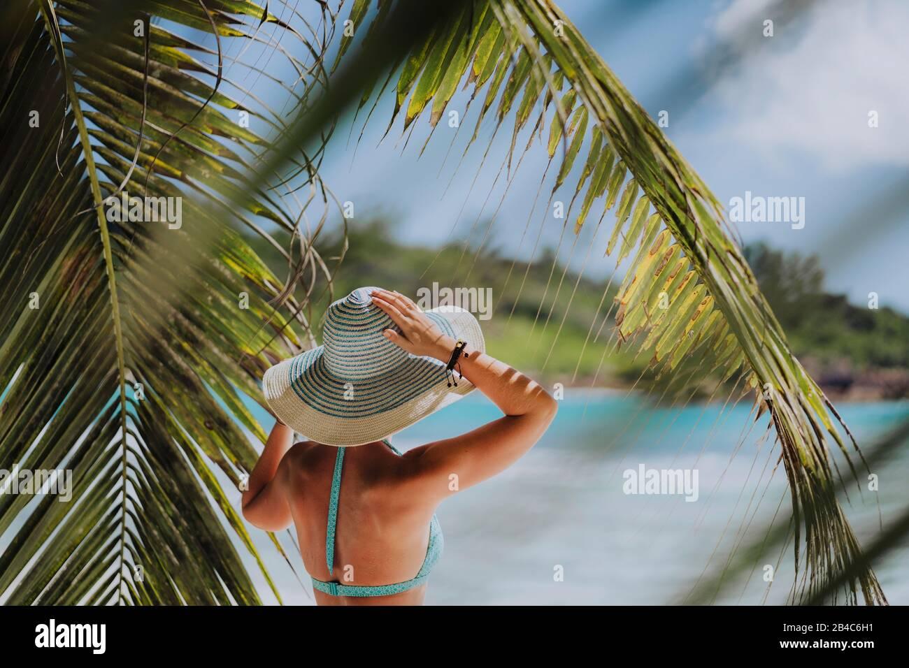 Mujer en la playa en la sombra de las palmeras con sombrero azul. Concepto de vacaciones de recreación en un paraíso de lujo. Foto de stock