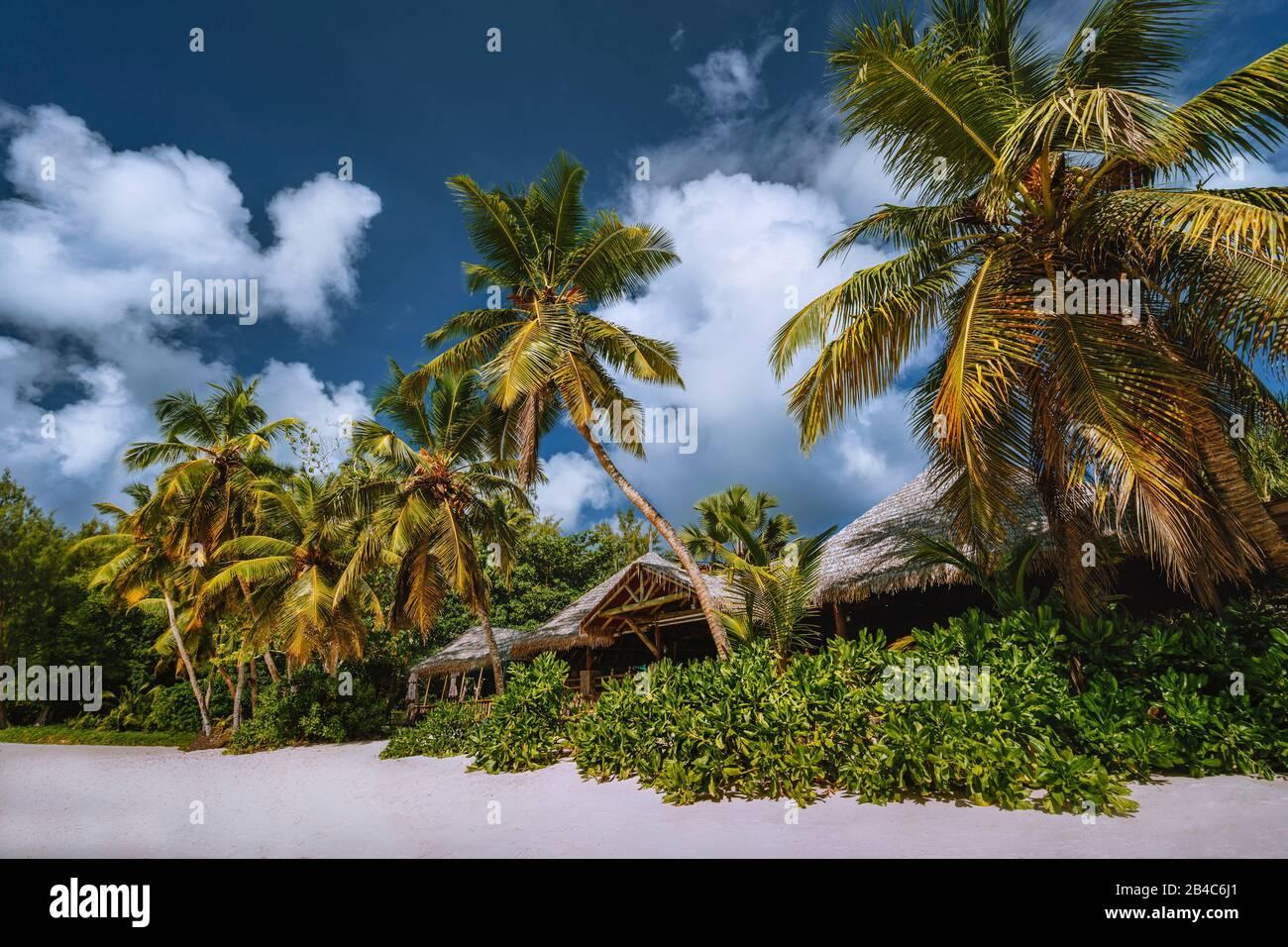 Paisaje de playa tropical con palmeras de coco y techos de paja. Vacaciones exóticas en el paraíso. Foto de stock