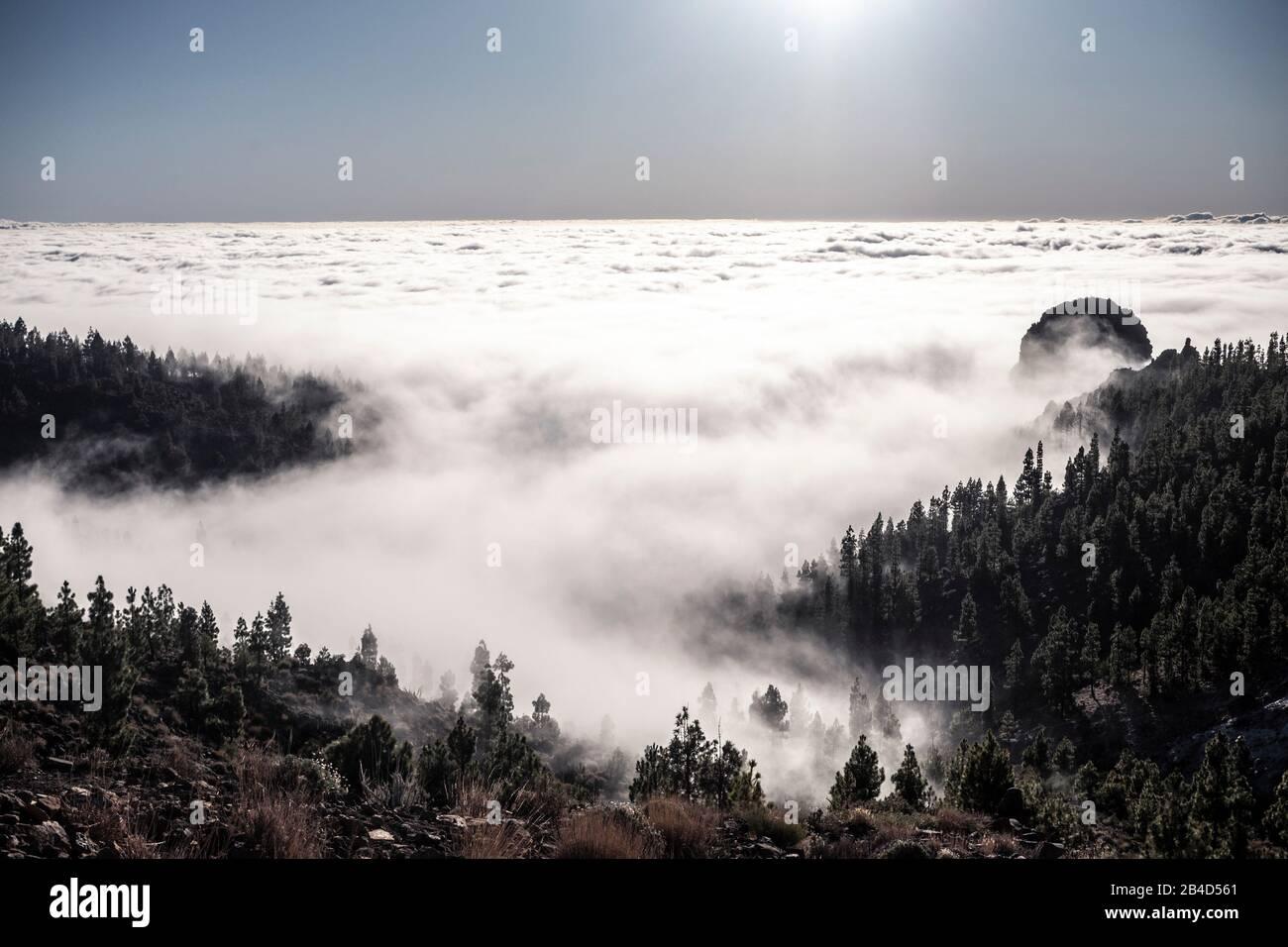 Paisaje natural hermoso con montañas bosque y nubes - horizonte y cielo sobre los árboles y las nubes - aventura y trekking concepto para una experiencia alternativa de viaje Foto de stock