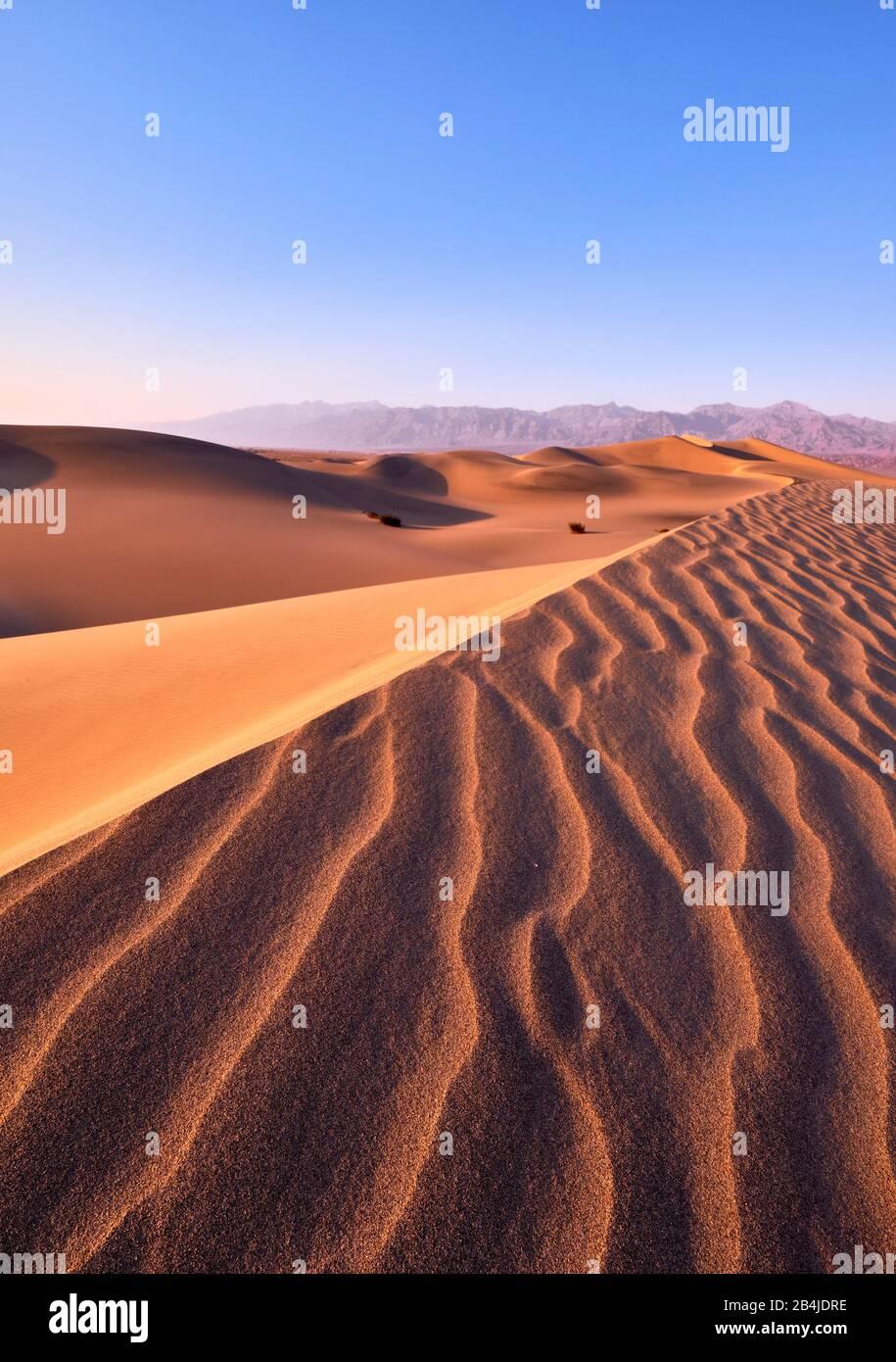 Estados Unidos, Estados Unidos De América, Nevada, Parque Nacional Del Valle De La Muerte, Dunas De Arena De Mesquite, Sierra Nevada, California Foto de stock