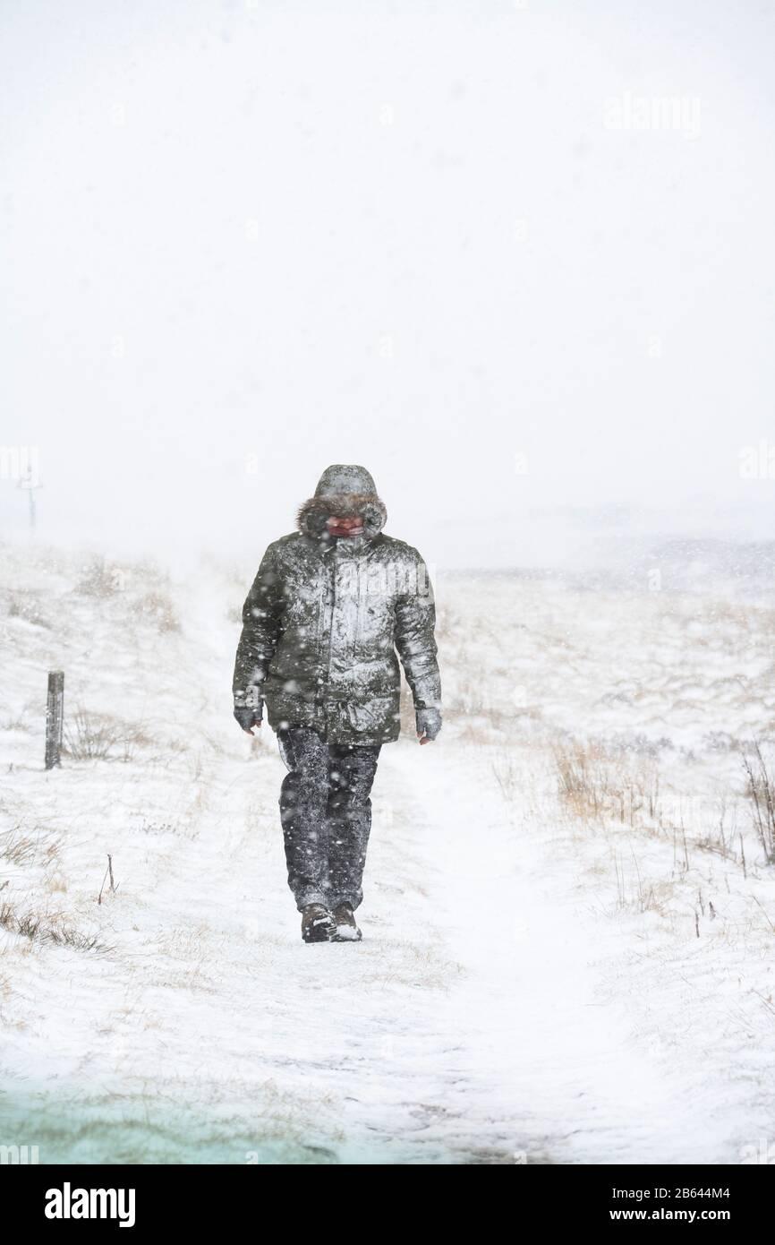 Hombre caminando en una tormenta de nieve durante la tormenta Jorge al lado de la carretera entre las colinas y el cerro. Febrero De 2020. Fronteras escocesas, Escocia Foto de stock