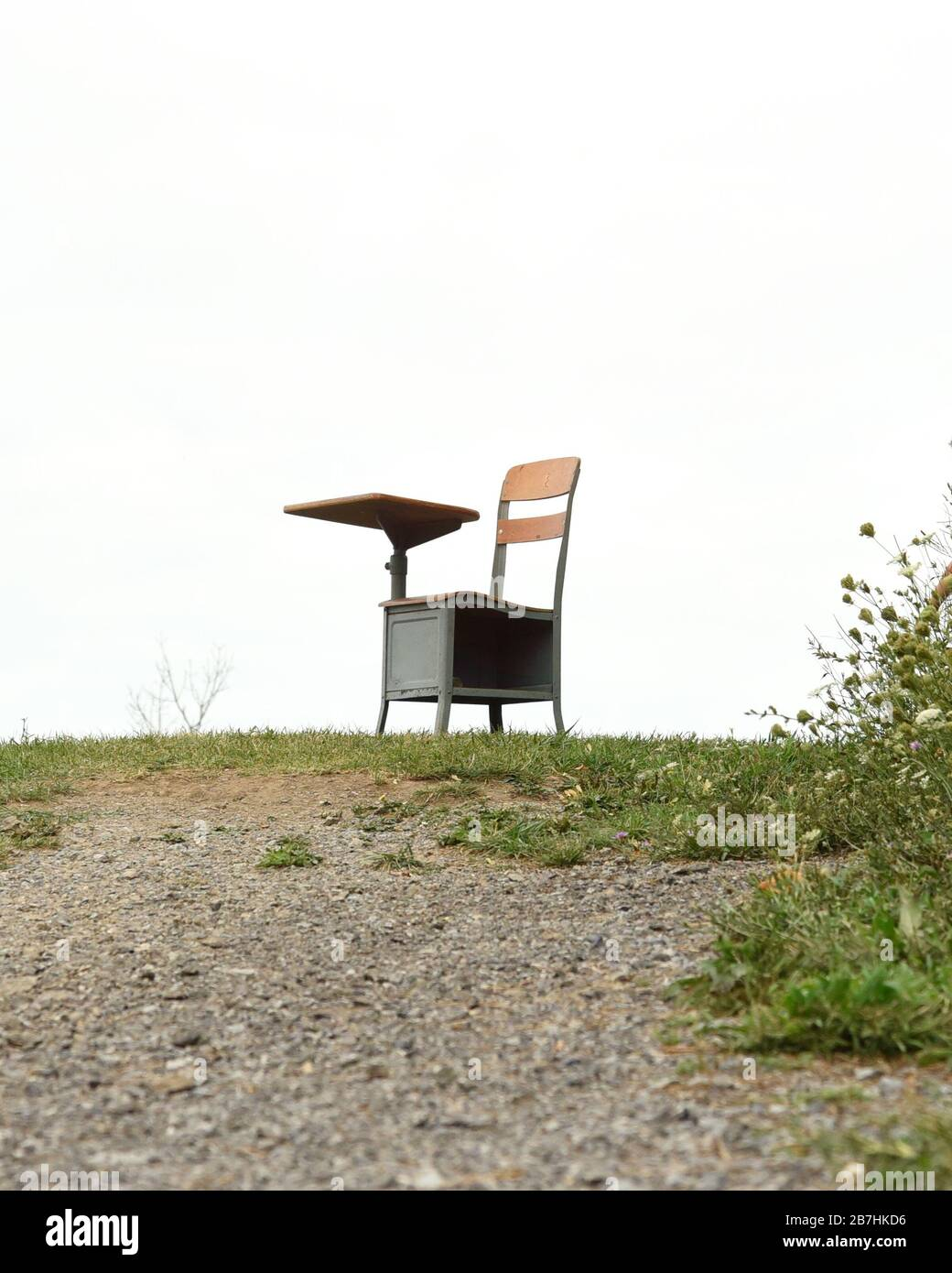 Un niño pequeño está saltando en felicidad afuera con un escritorio y un libro. Utilícelo para un concepto de regreso a la escuela, educación o éxito. Foto de stock