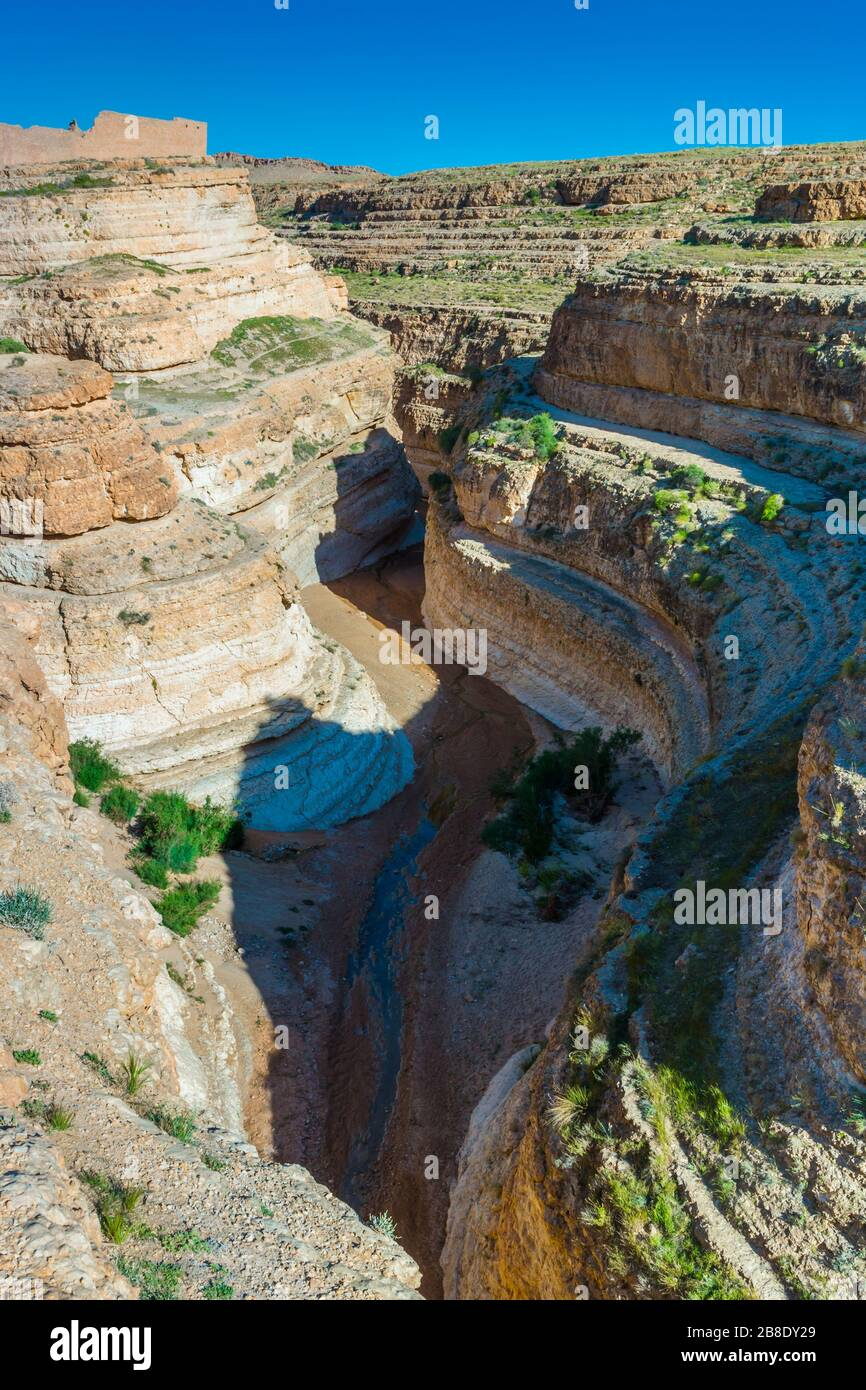 Oasis de montaña. Foto de stock