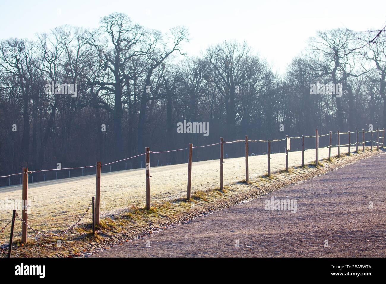 valla en el parque de invierno, hierba cubierta de ríme Foto de stock