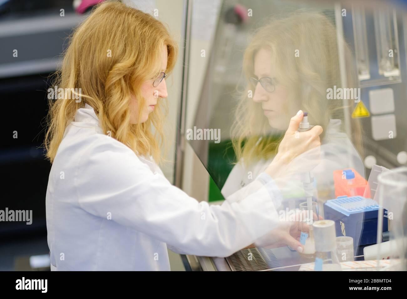 Brunswick, Alemania. 1 de abril de 2020. La científica Katharina Kleilein está investigando la densidad óptica de un cultivo bacteriano en el laboratorio estéril de la empresa de ciencias biológicas Yumab. La empresa de puesta en marcha realiza investigaciones sobre el desarrollo de anticuerpos humanos y, por lo tanto, está tratando de desarrollar fármacos contra Covid-19. Crédito: OLE Spata/dpa/Alamy Live News Foto de stock
