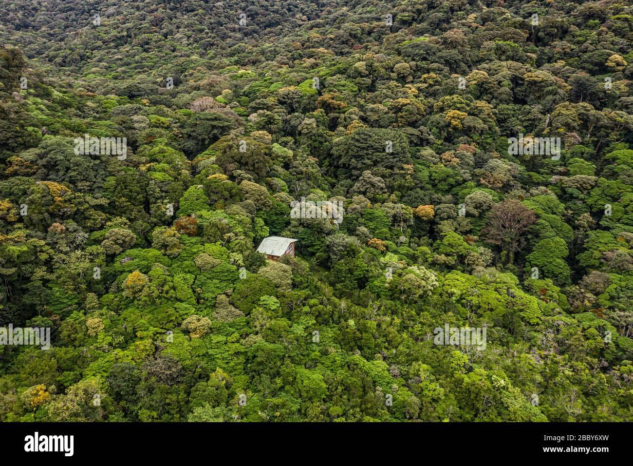 Vista Aerea De La Reserva Biologica Bosque Nuboso Monteverde Provincia De Puntarenas Costa Rica Fotografia De Stock Alamy