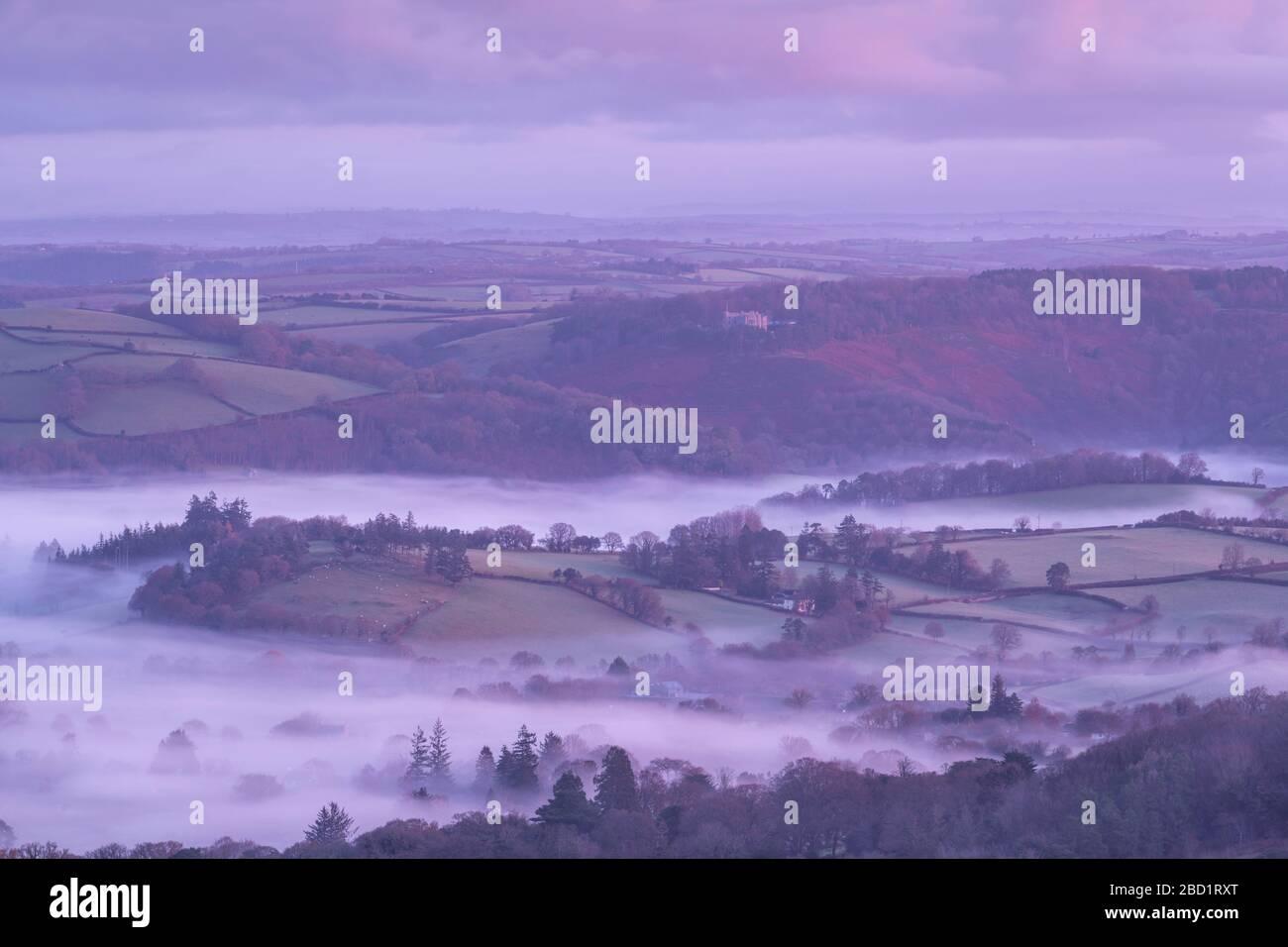 La niebla envolvía la campiña de Dartmoor cerca del Castillo Drogo en invierno, el Parque Nacional de Dartmoor, Devon, Inglaterra, Reino Unido, Europa Foto de stock