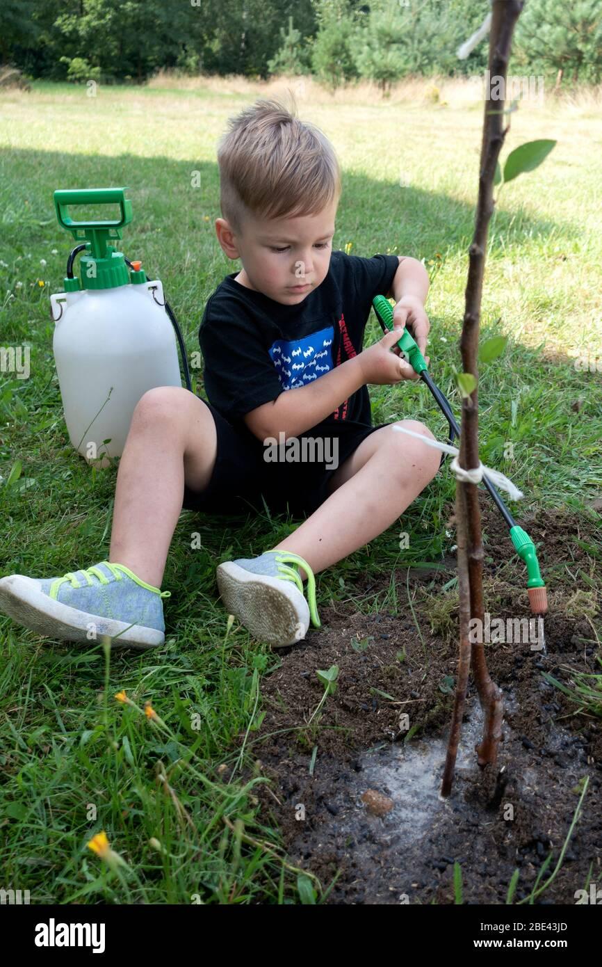 Joven ayudante de niño riego un árbol de manzana recién plantado. Zawady Gmina Rzeczyca Polonia Foto de stock