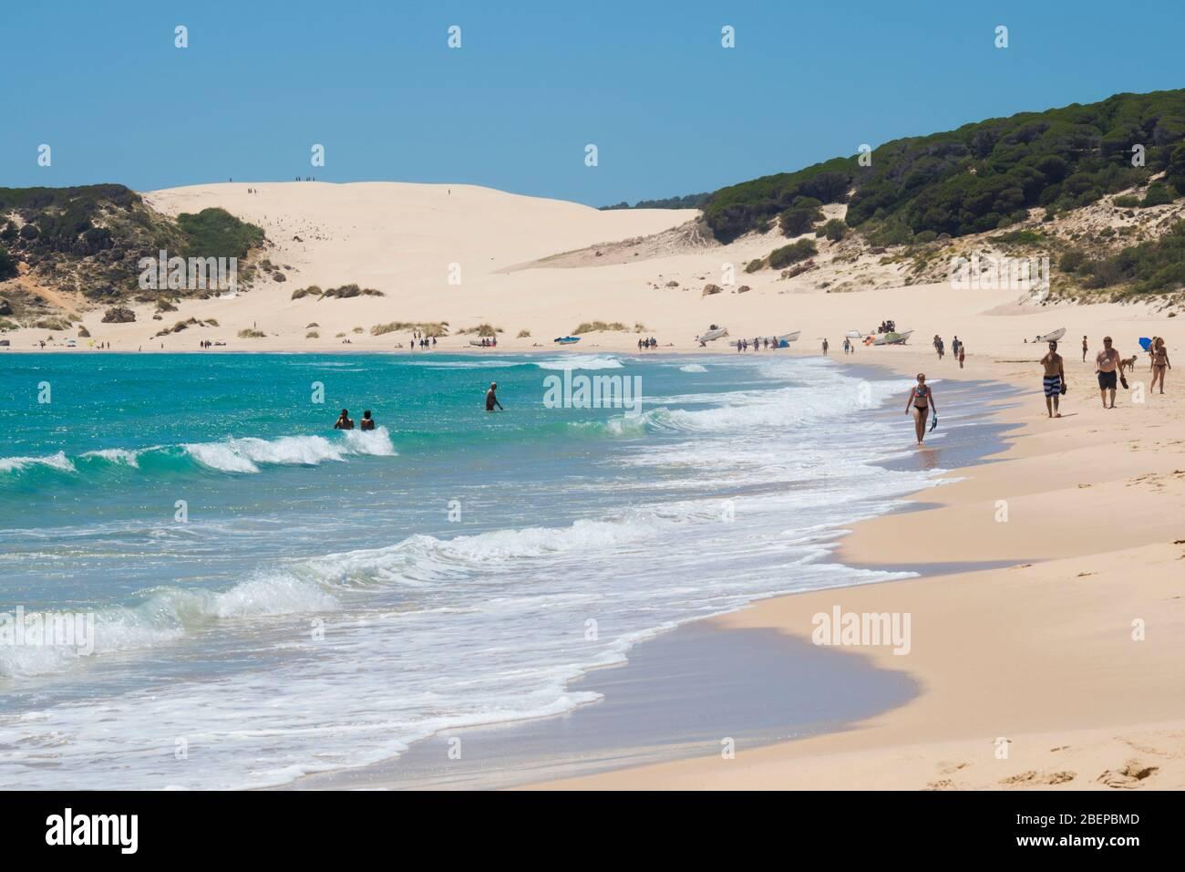 Bolonia, Costa de la Luz, Cádiz, Andalucía, sur de España. La playa de Bolonia. Playa de Bolonia. En el fondo se encuentra la duna de Bolonia, oh Foto de stock
