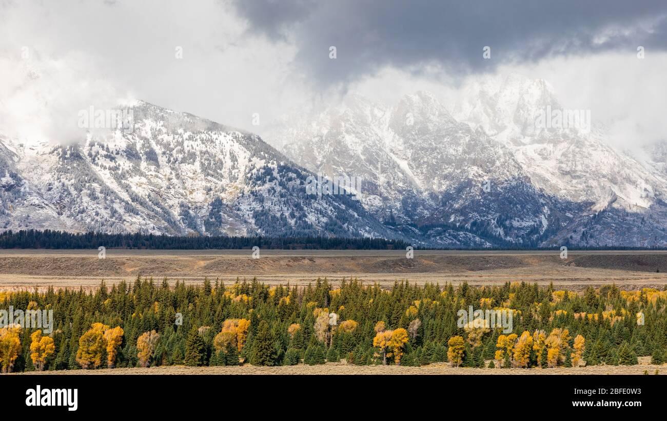 Montañas cubiertas de nieve pico de Grand Teton rodeado de árboles coloridos en otoño del Parque Nacional Grand Teton, Wyoming, Estados Unidos. Foto de stock