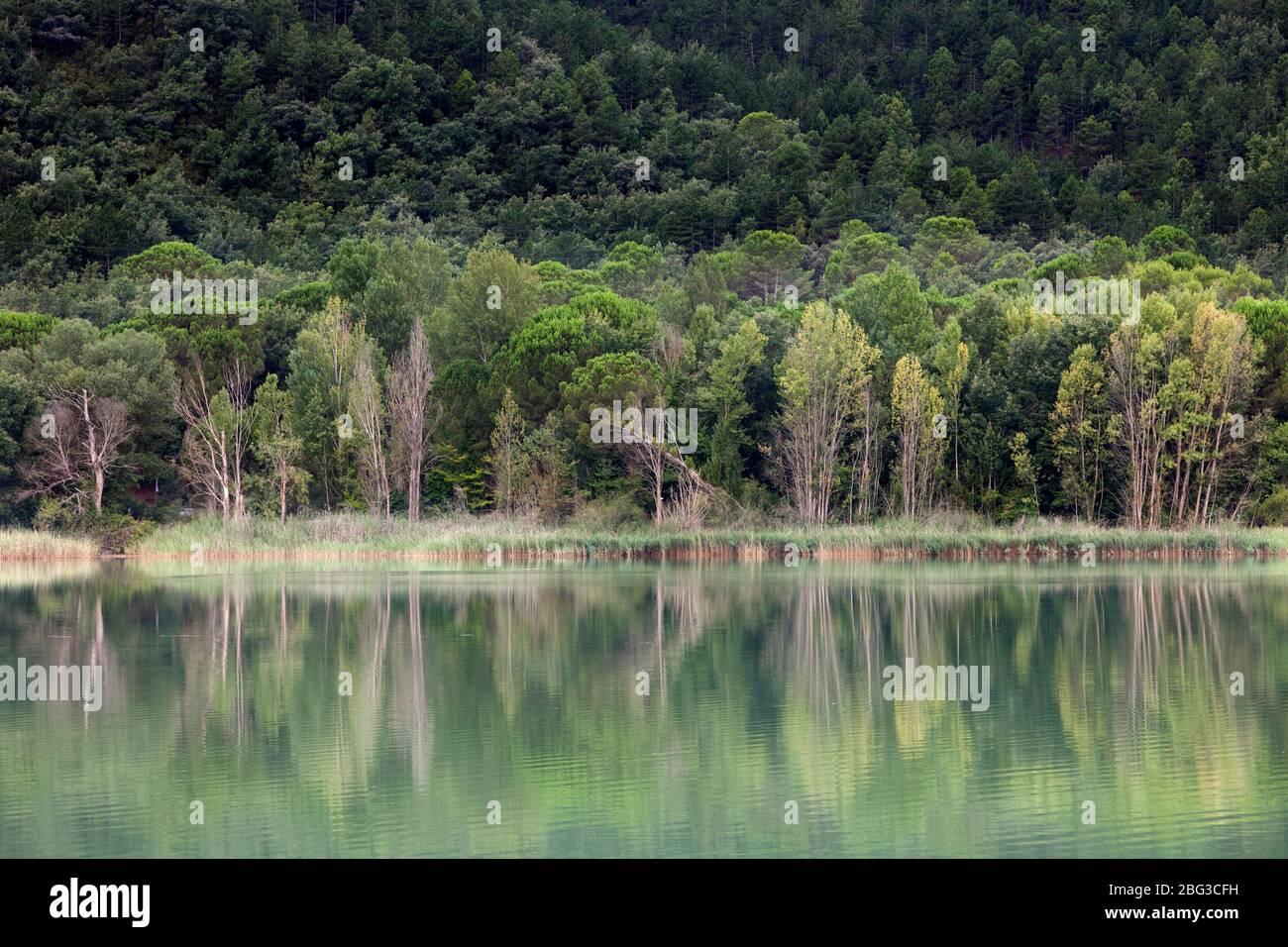 Terradets Swamp. Pallars Jussà, Pirineos, Cataluña (España, Europa) Foto de stock