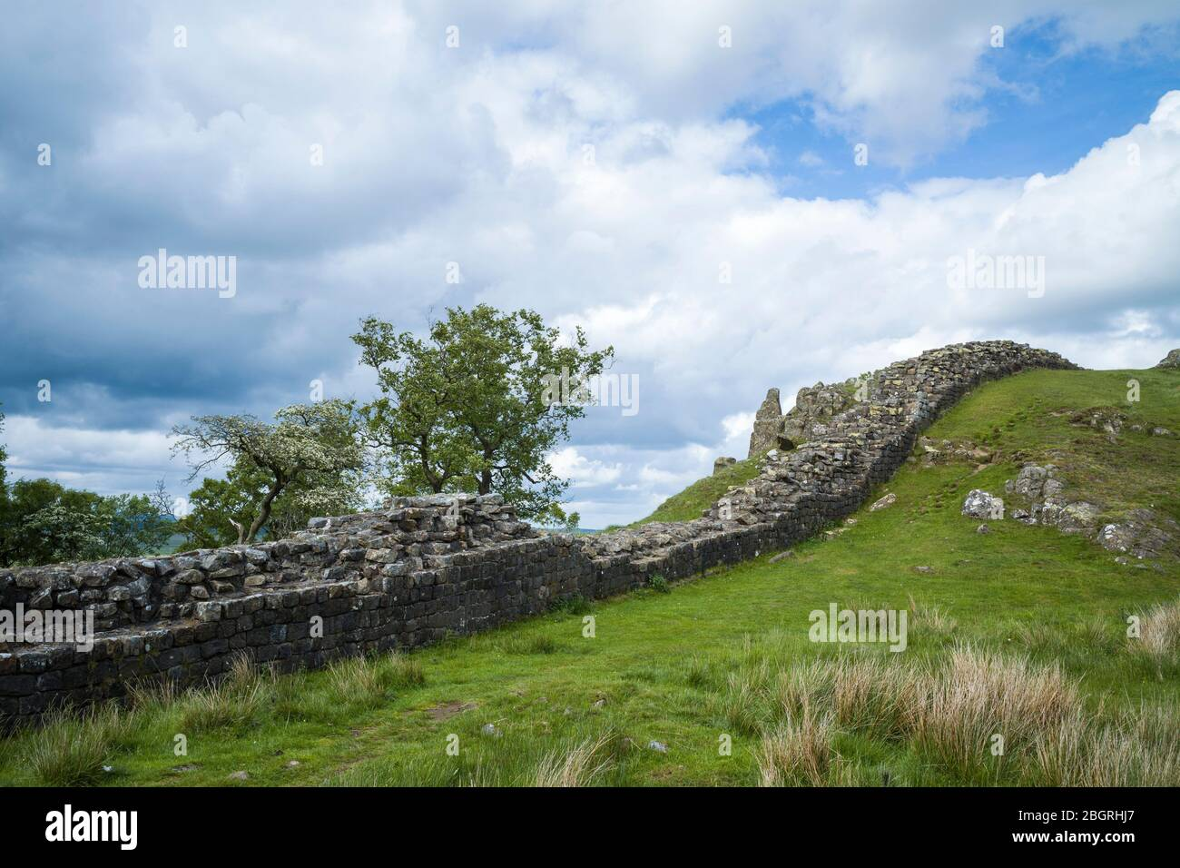 Muro de Adriano, límite de construcción de piedra en el Parque Nacional de Northumberland en Walltown Crags, Inglaterra Foto de stock