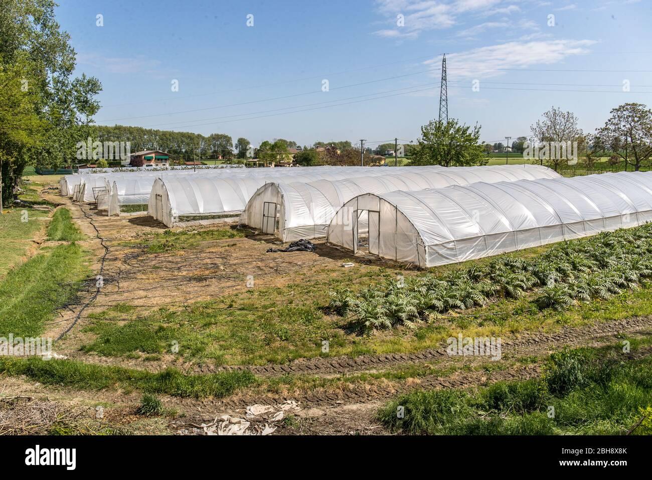 """Ferrara, Italia. 22 de abril de 2020. Invernaderos con frutas y verduras en la comunidad de recuperación """"Casa di Stefano"""" (Casa de Stefano) en Ferrara, ITA Foto de stock"""