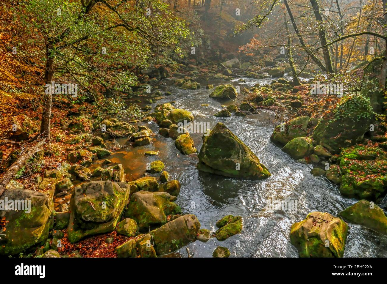 Río Prüm en las cascadas de Irrel cerca de Irrel, reserva natural del sur de Eifel, Renania-Palatinado, Alemania Foto de stock