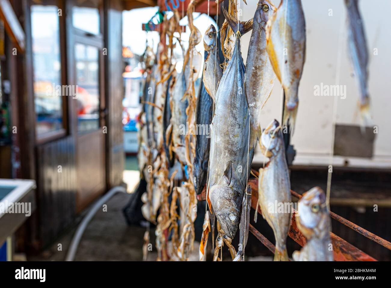 Pescado seco de mar colgado en ganchos en un mercado de pescado local. Foto de stock