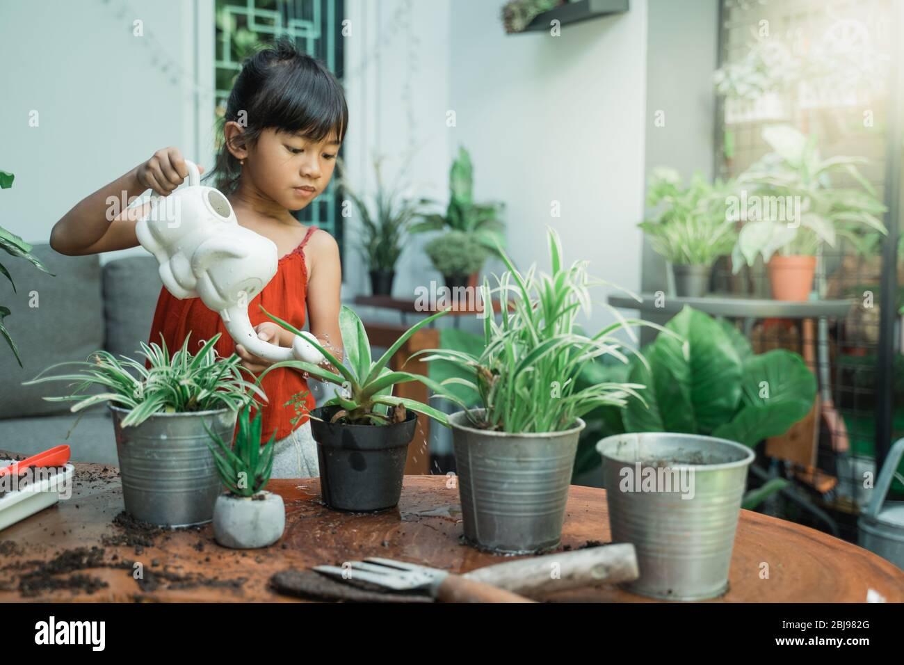 feliz asiático niño plantando y la actividad de jardinería en casa por sí misma Foto de stock