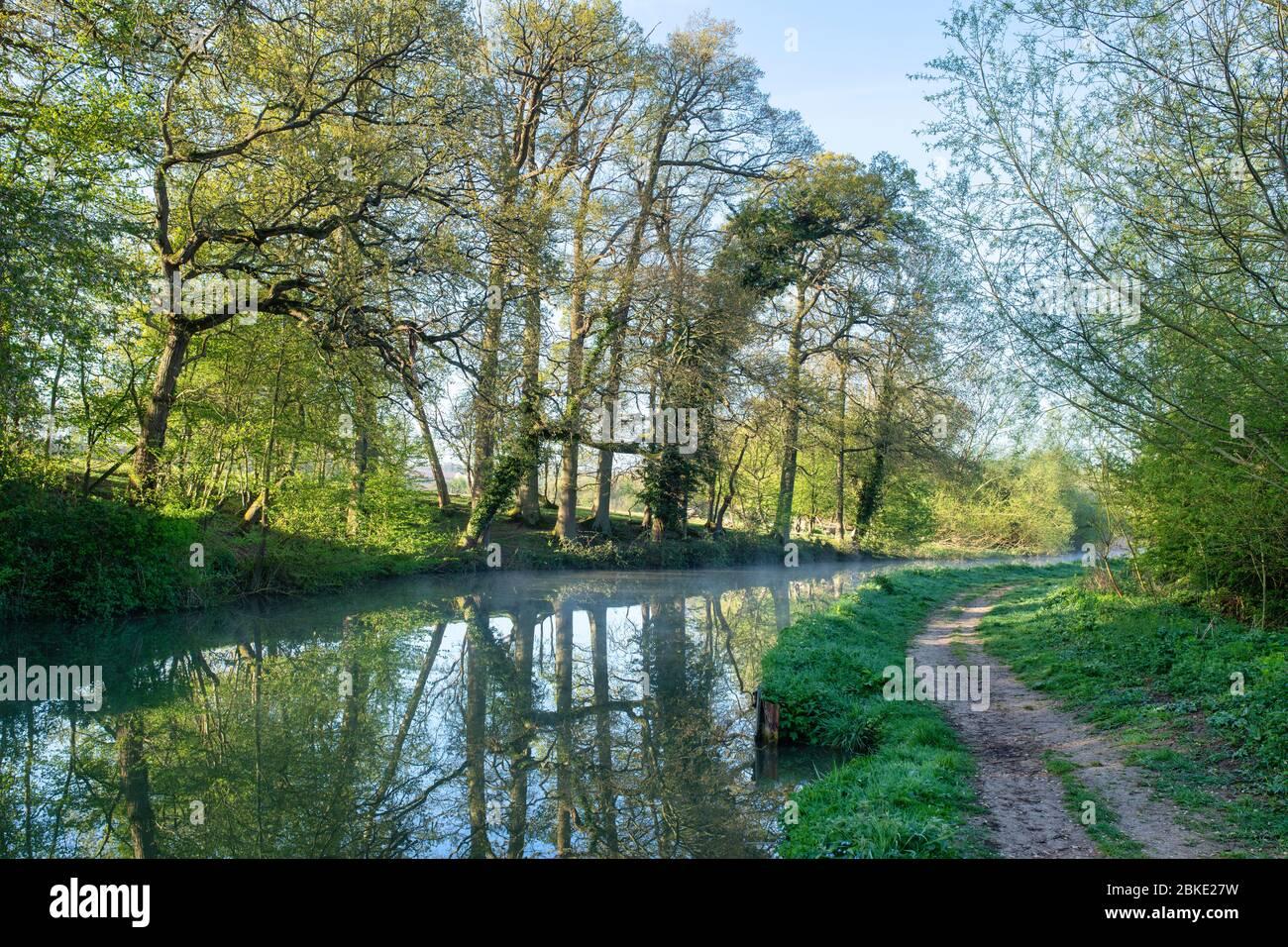 Reflexiones de árboles a lo largo del canal de Oxford en una mañana de primavera. Lower Heyford, Oxfordshire, Inglaterra Foto de stock