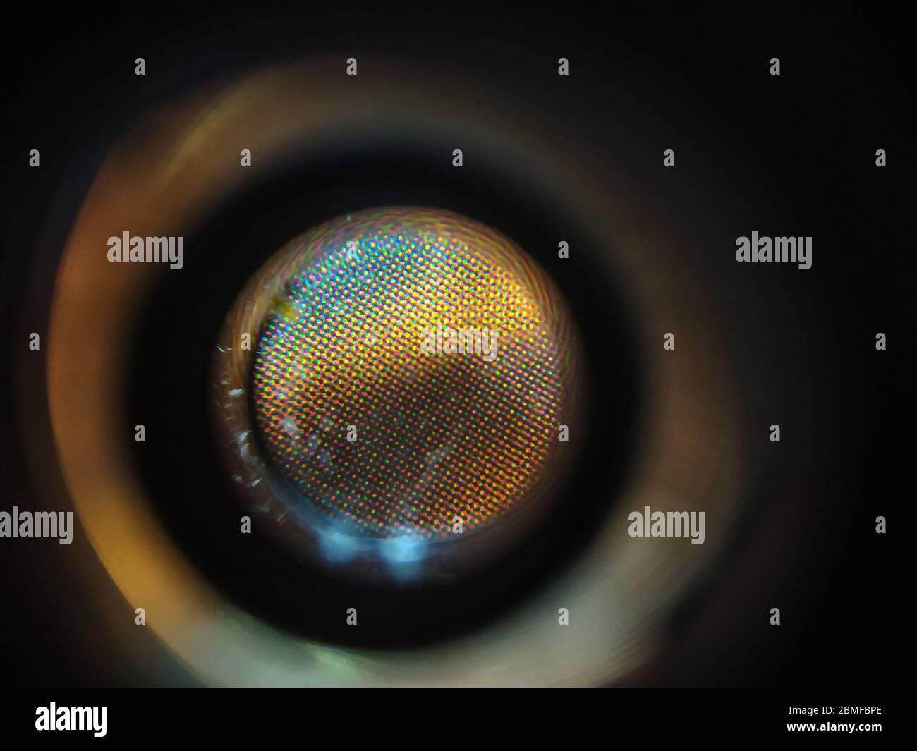 Nivel atómico de zoom de productos de impresión en color Foto de stock