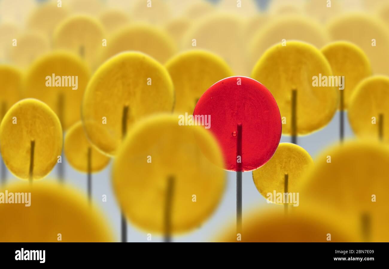 Multitud de paletas amarillas y una original de ellas. Individualidad. Singularidad. Personalidad y carácter diferentes. Líder. Foto de stock