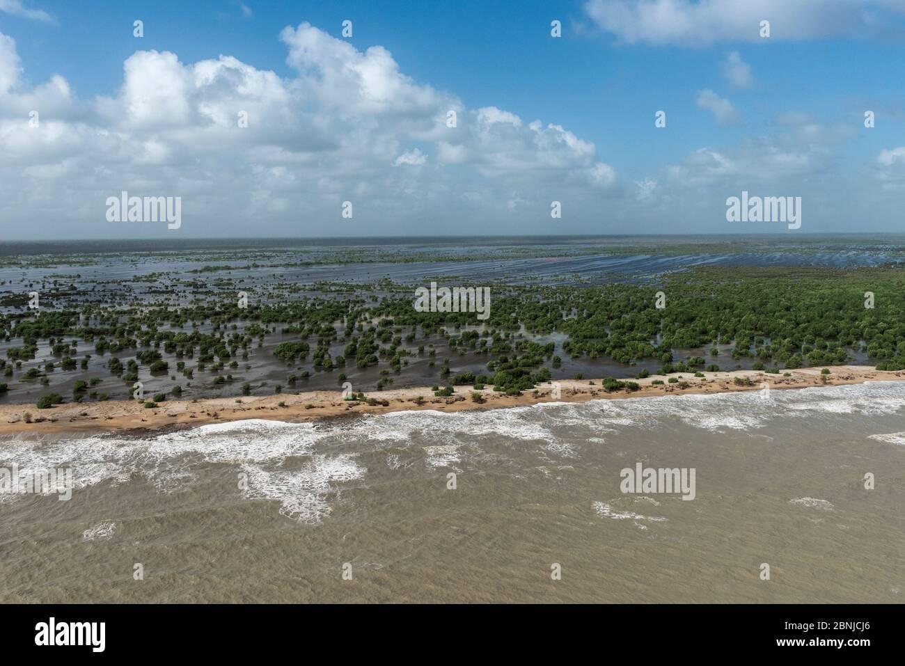 Vista aérea de la playa de Shell, en el norte de Guyana, Sudamérica Foto de stock