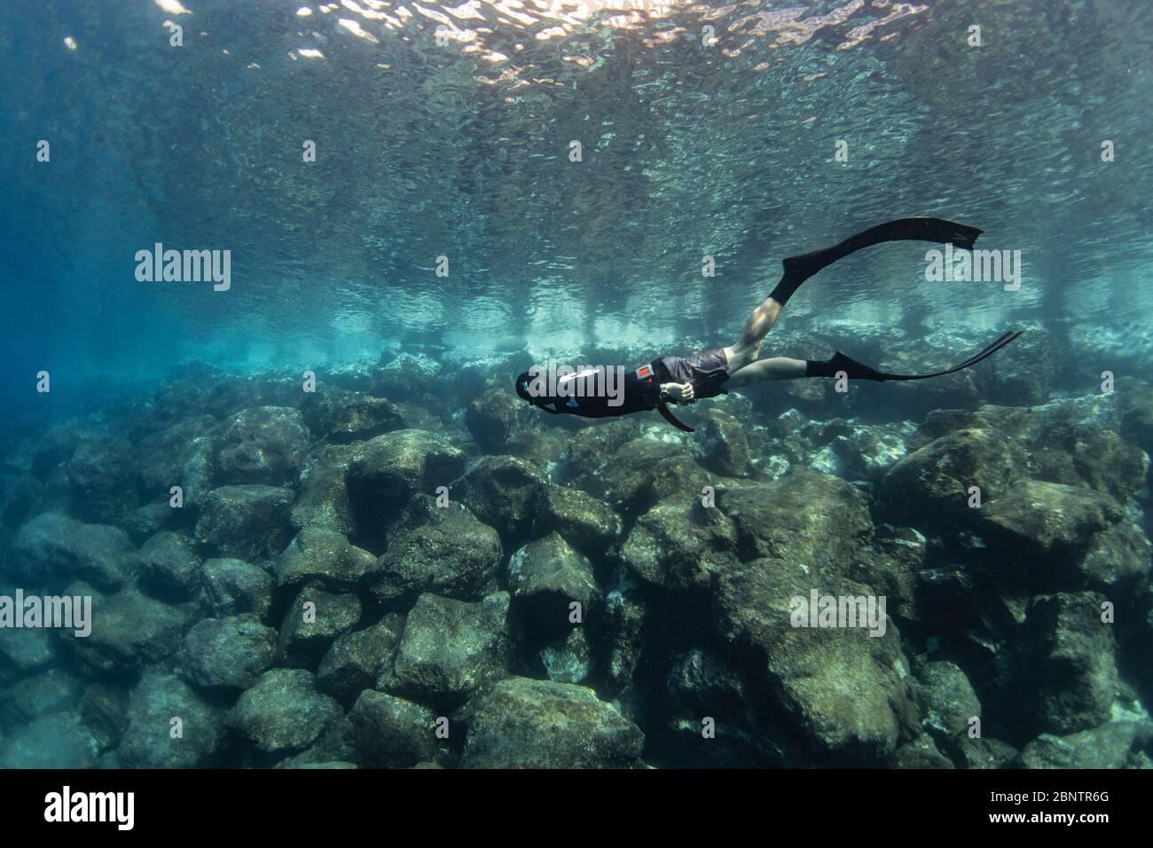Buceo submarino bajo el agua de Tenerife, Islas Canarias, España. Foto de stock