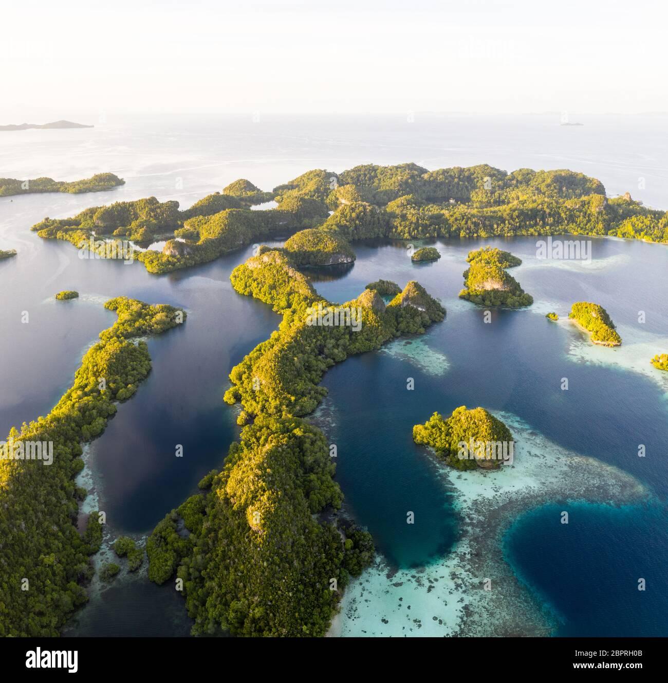 Las islas de piedra caliza que se encuentran en toda Raja Ampat están rodeadas de arrecifes de coral. Esta remota región es un destino favorito para los buceadores. Foto de stock
