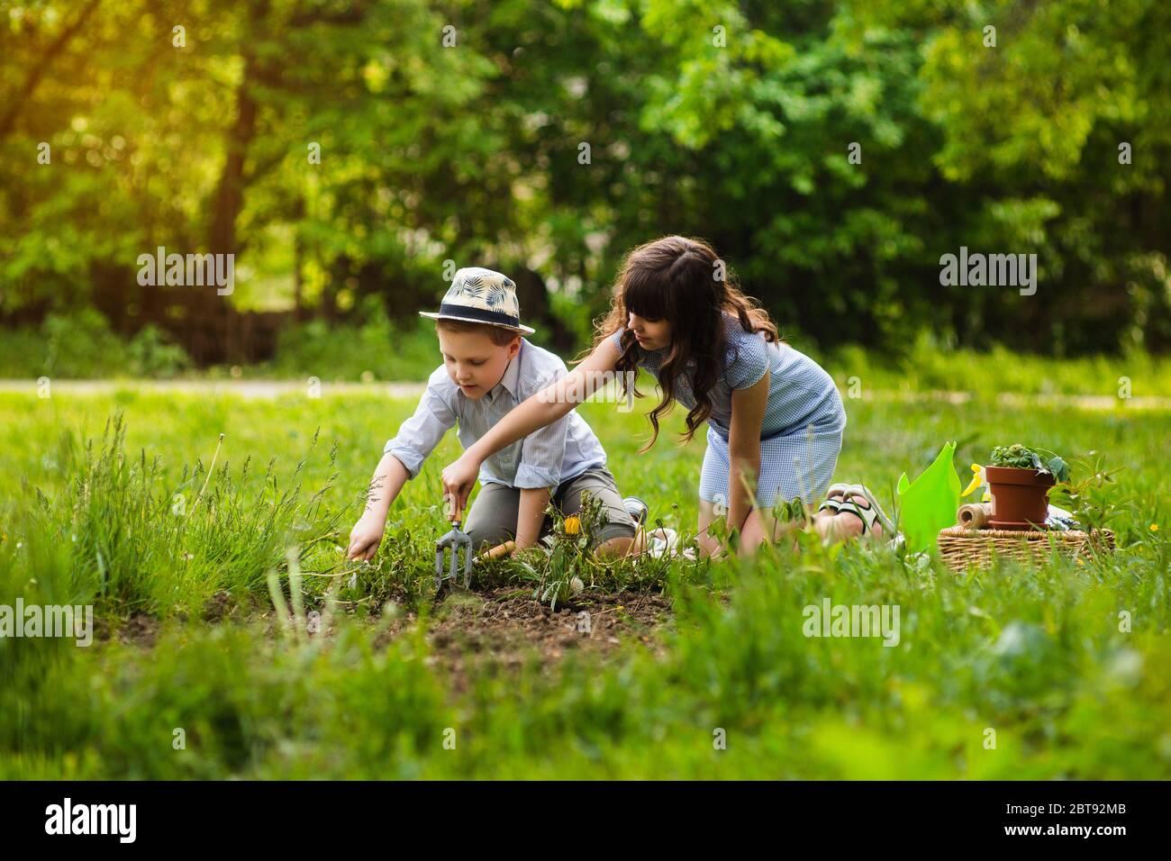 Joven niña y joven jardinero de niño de la planta flores en el jardín de verano al atardecer. Actividades de verano. Foto de stock