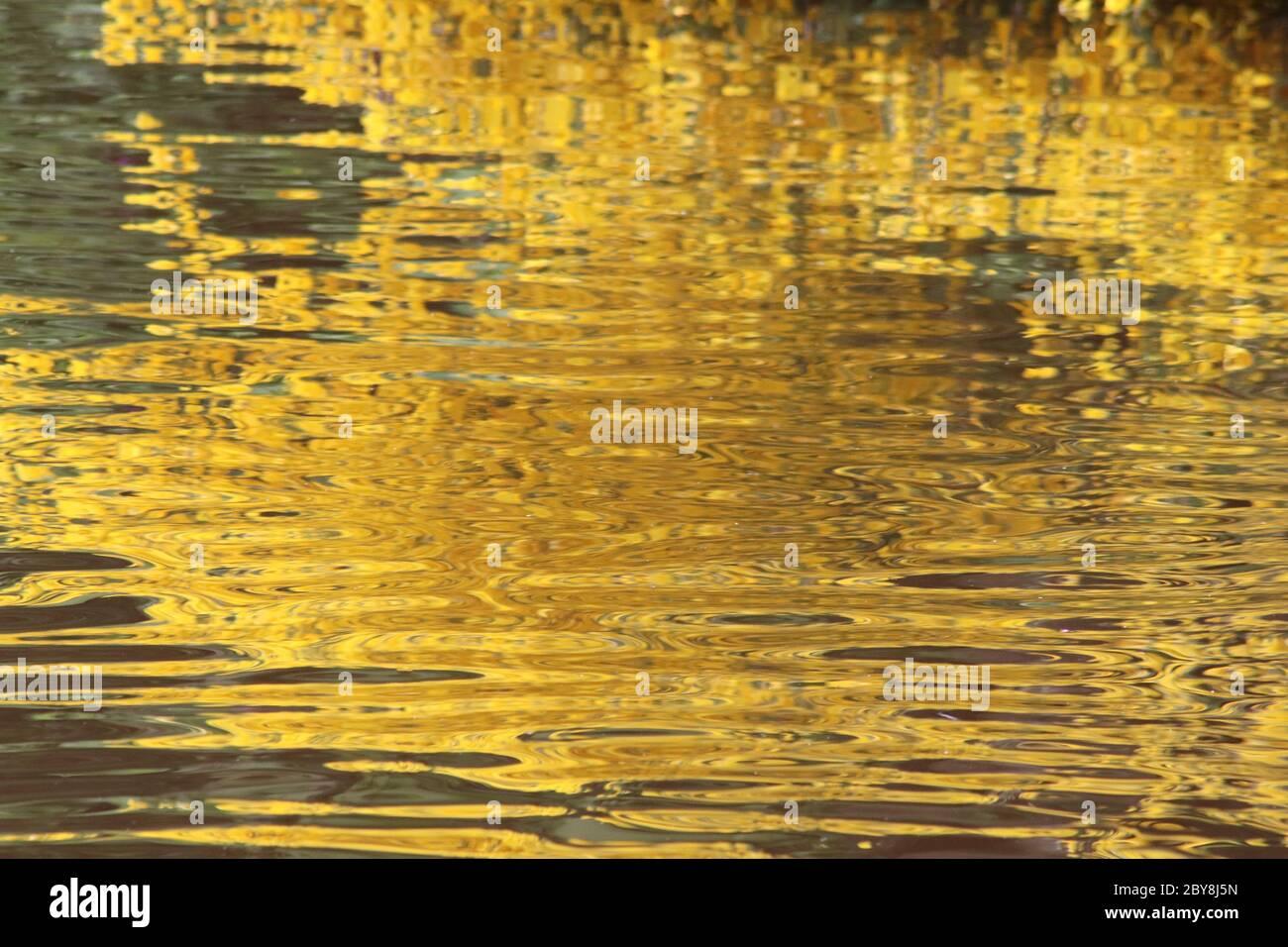 Reflejos de oro y verde en estanque Foto de stock