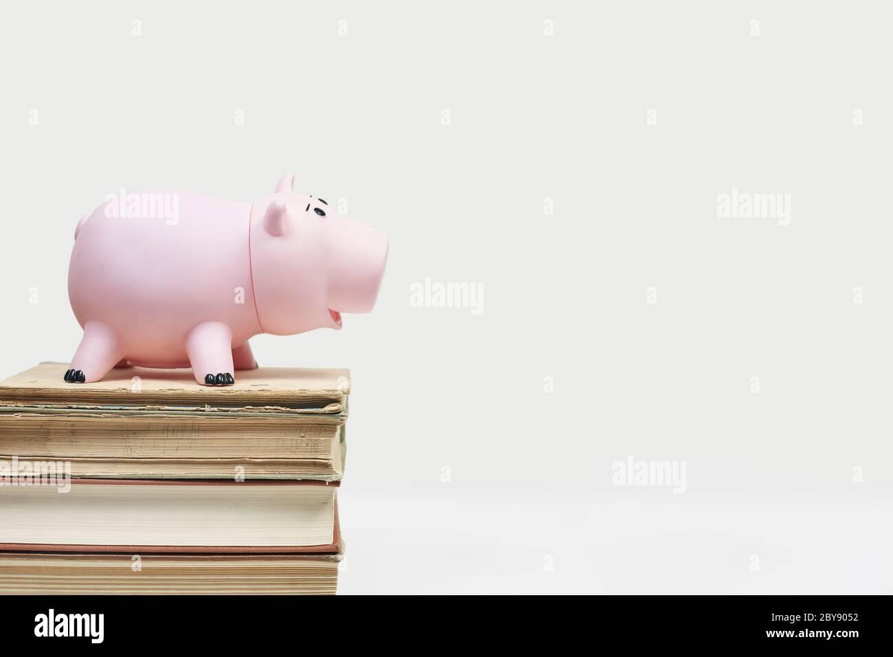 Pila de libros viejos con banco de palomas. Costo de la educación. Ahorro de dinero para la universidad. Ahorre y pague por la educación universitaria infantil. Formación en línea o. Foto de stock