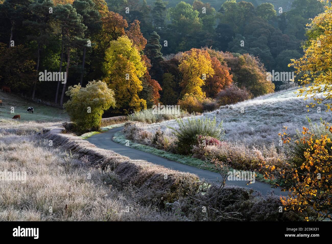 Una mañana de otoño helada en Beresford Dale, Dove Valley, Peak District National Park, Staffordshire, Inglaterra Foto de stock