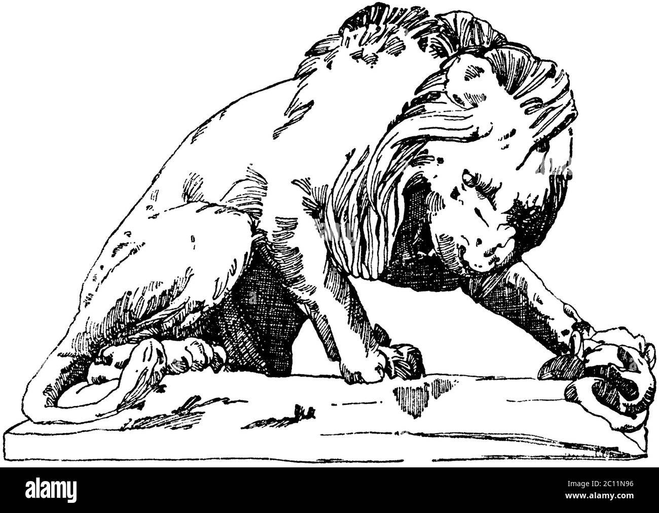 león / Panthera leo / Löwe aus den Tuilerien (Terrasse du bord-de-l'eau) en París. 19. Jahrhundert. (Baldus, Raguenet) / libro de patrones, ) Foto de stock