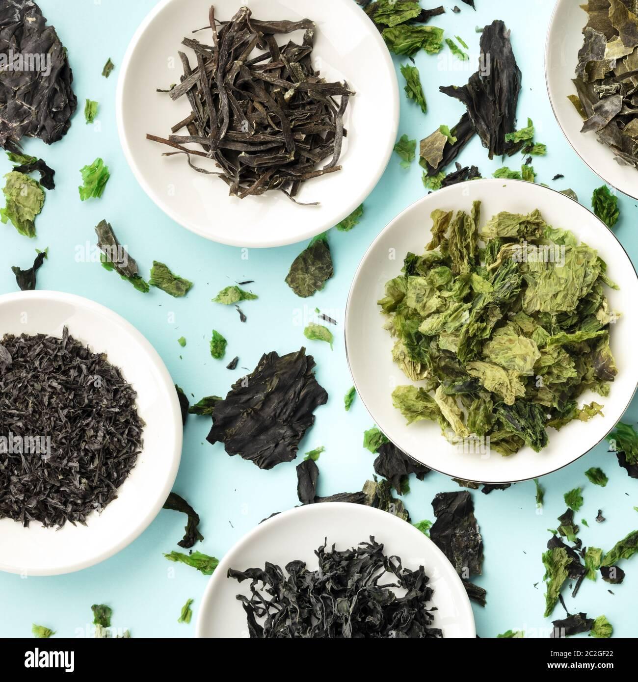 Diversas algas secas, verduras, plaza mar Fotografía cenital sobre un fondo verde azulado Foto de stock
