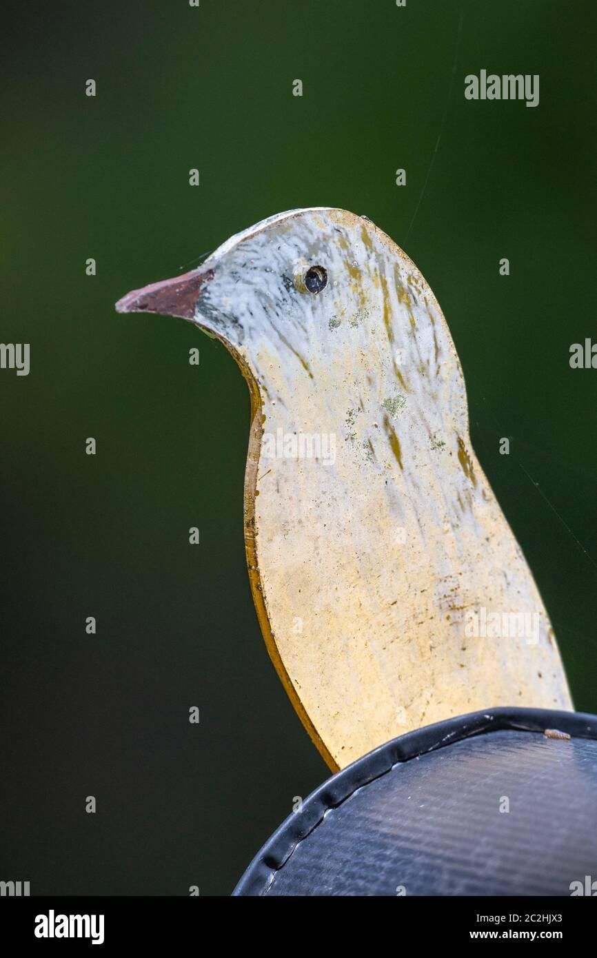 Buzón decorado con Pinted Bird Foto de stock