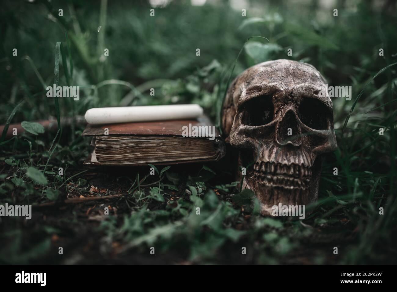 Abrir libro de magia negra con símbolos ocultos y cráneo humano sobre la hierba en el bosque. Exorcismo y rituales sobrenaturales Foto de stock
