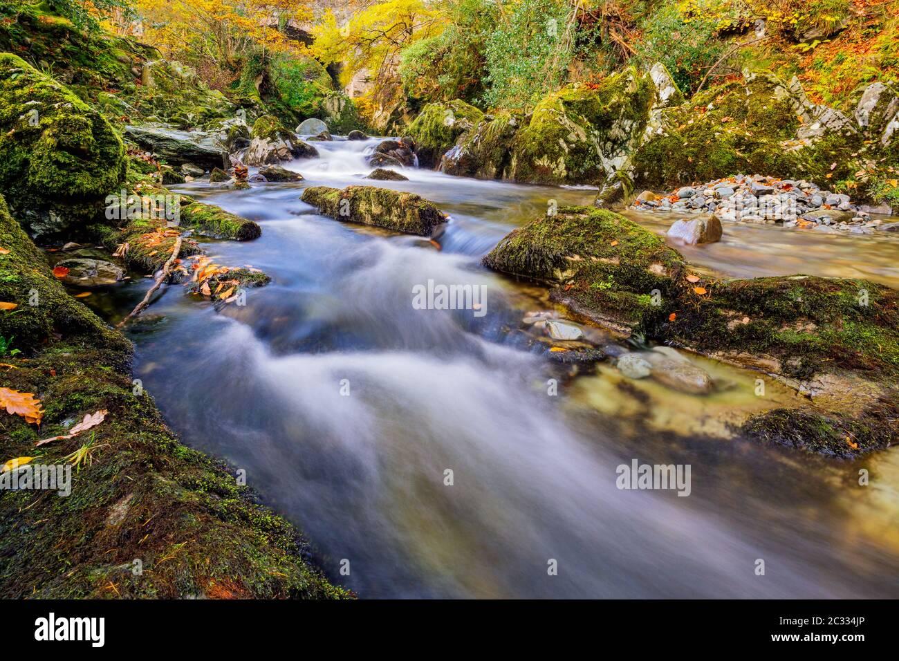 Cascadas en un arroyo de montaña con rocas moscosas en el Parque Forestal Tollymore Foto de stock