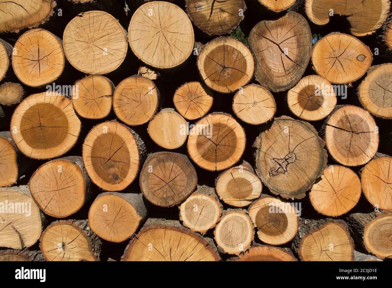 Pila de madera, pila de madera, Italia Foto de stock