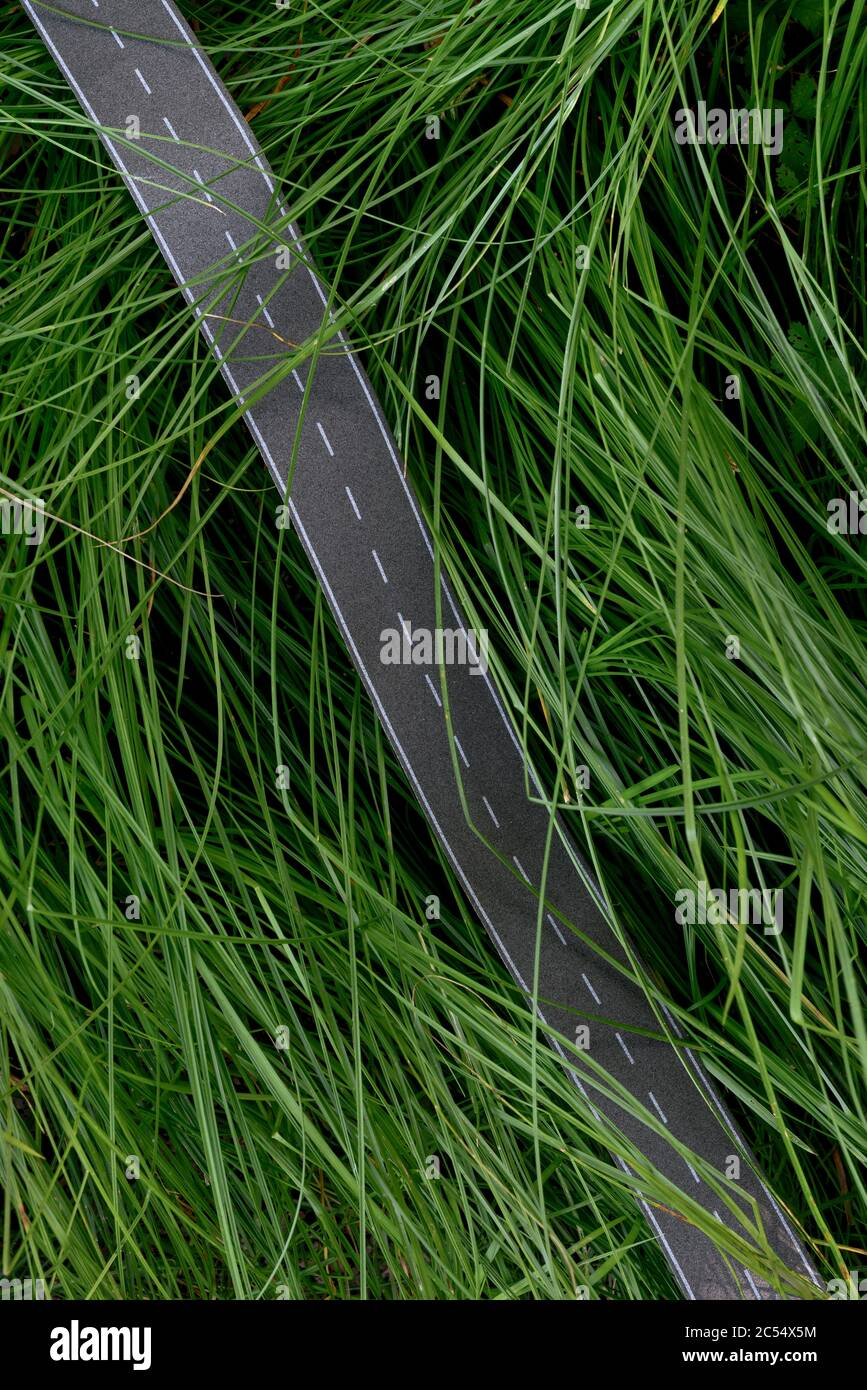 El camino pavimentado contamina un ambiente natural Foto de stock