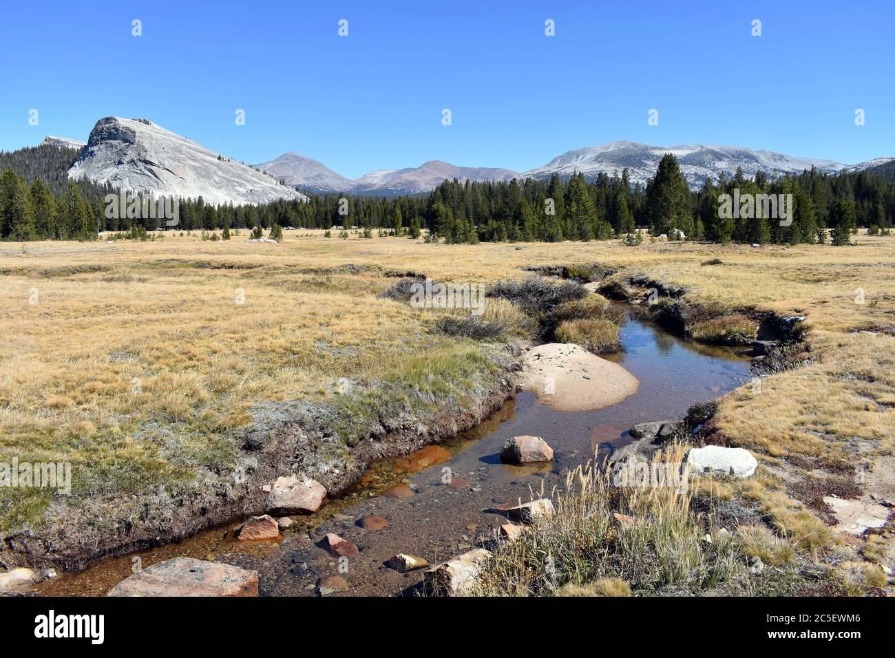 Vista de Tuolumne Meadows en otoño / otoño con Lembert Dome y el río Tuolumne rodeado de hierba amarilla. Parque Nacional Yosemite, California. Foto de stock