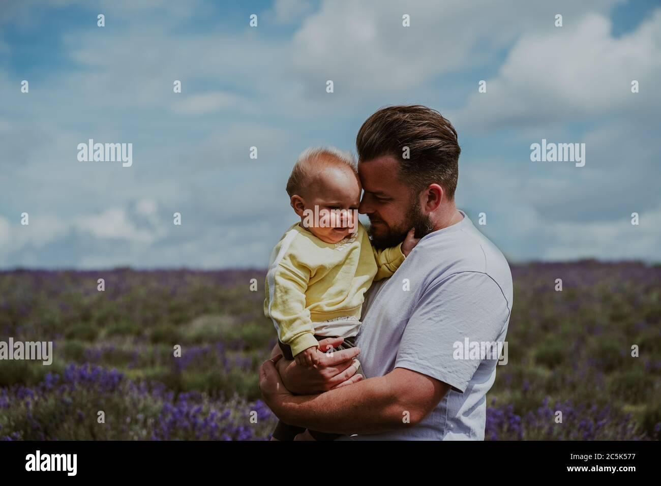 Fatehr y son en Lavender Field, Reino Unido Foto de stock