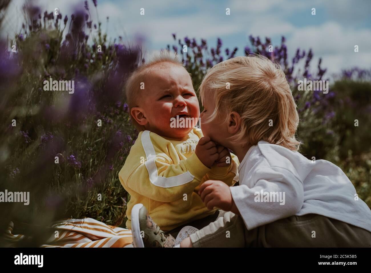 Dos niños pequeños en Lavender Field, Reino Unido Foto de stock