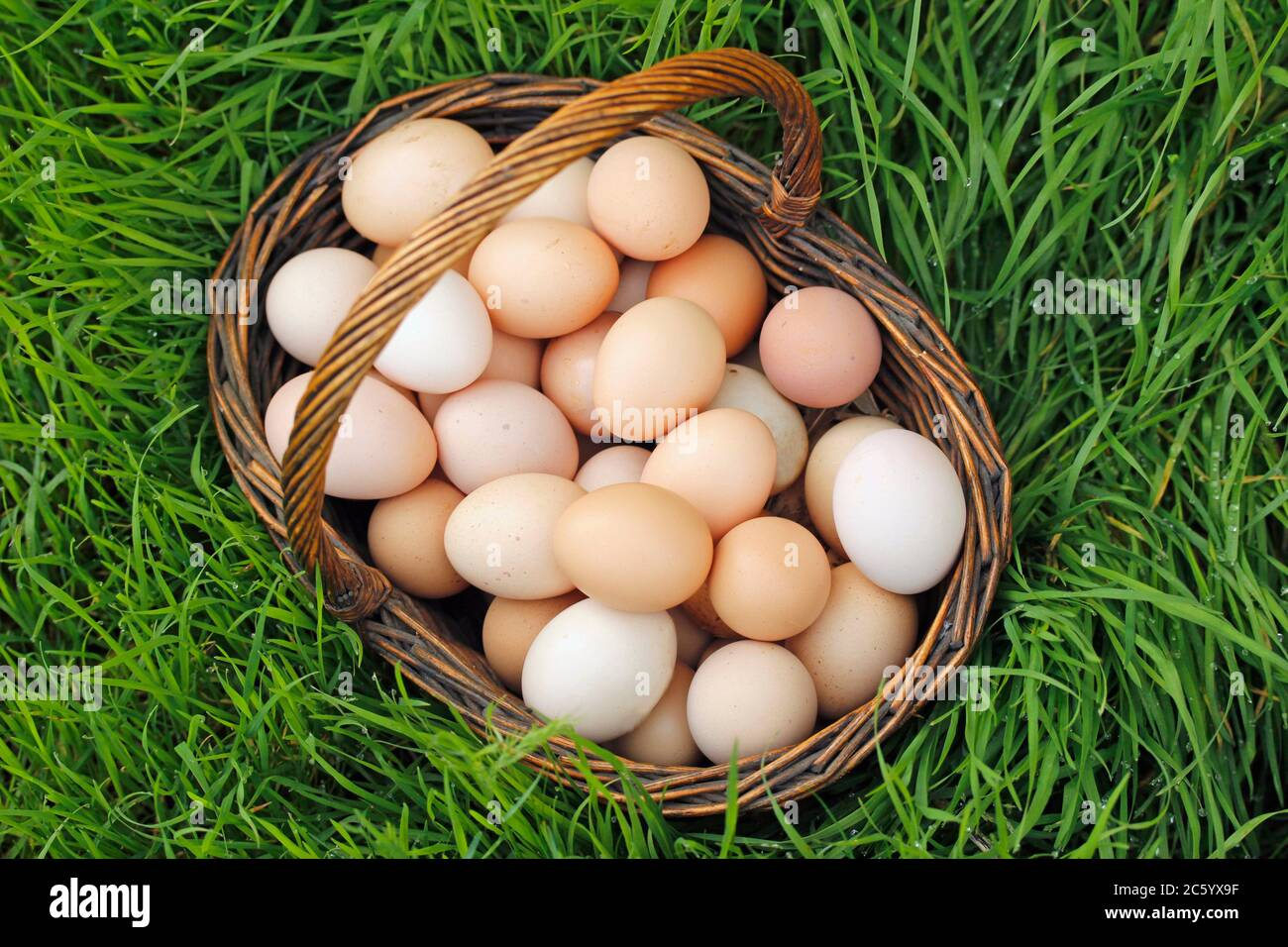 Cesta con huevos. Foto de stock